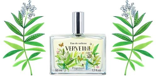 Fragonard Verveine ~ fragrance review