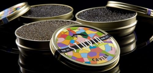 Caviar Made in France:  l'or noir d'Aquitaine