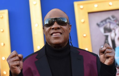 VIDEO. Stevie Wonder participe à un record du monde du «Guinness Book»