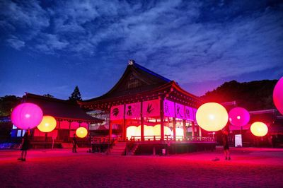 Amazing Light Installation Illuminating an Ancient Shrine & Forest in Kyoto