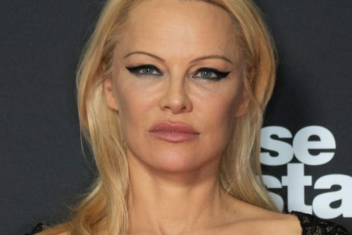 PHOTO. Pamela Anderson, seins nus, poste un message cryptique sur Instagram