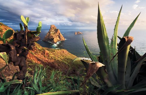 The Beauty of the Canary Islands